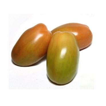 Pomodoro Verdi